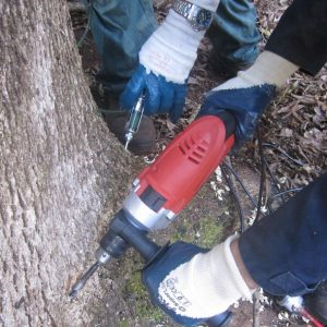 $100,000 Camphor Conversion Grant
