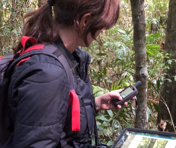 Fieldwork Volunteer Needed for Research