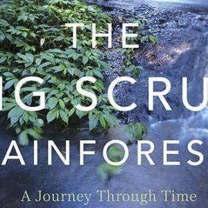 Take the Big Scrub Journey through time