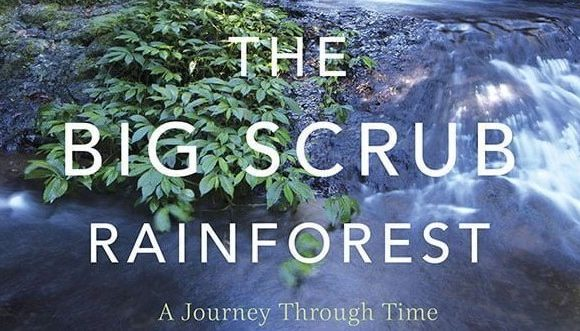 Take the Big Scrub Journey through time